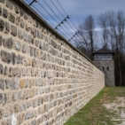 D.Mauthausen